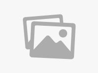 [借書]眾多免費書集有板全的PDF下載
